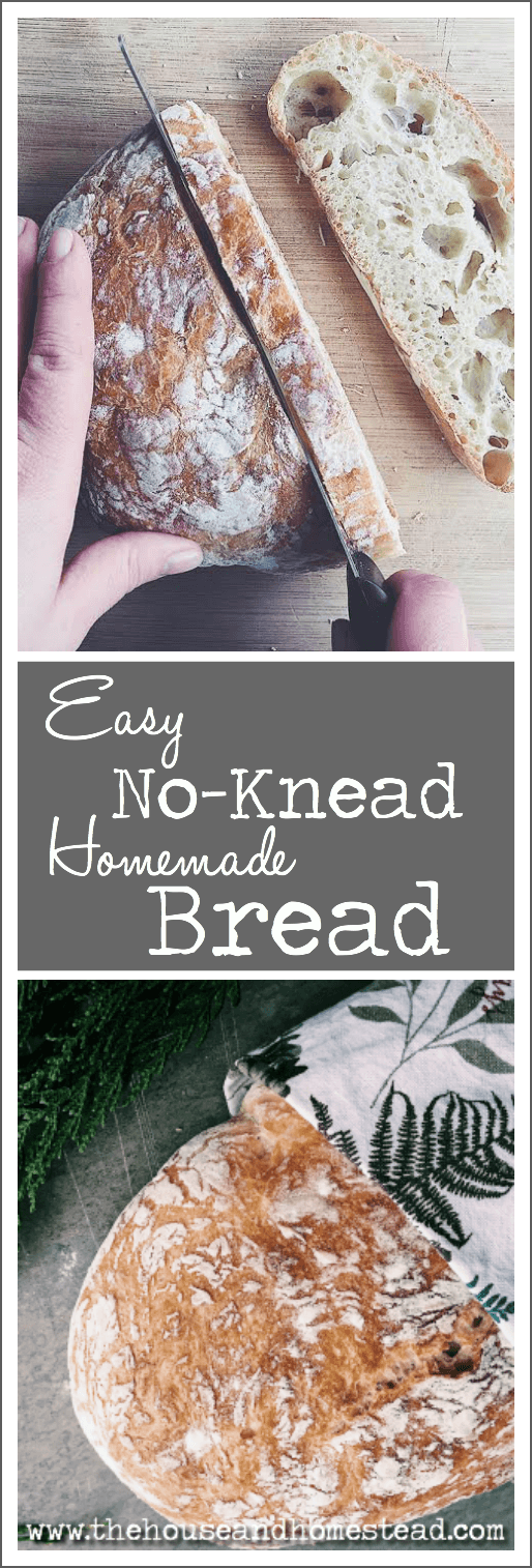 This easy no-knead homemade bread requires just a few simple ingredients, a little bit of time and practically zero effort. An artisan-style bread that costs just pennies per loaf and rivals store-bought bread! #homemadebread #nokneadbread