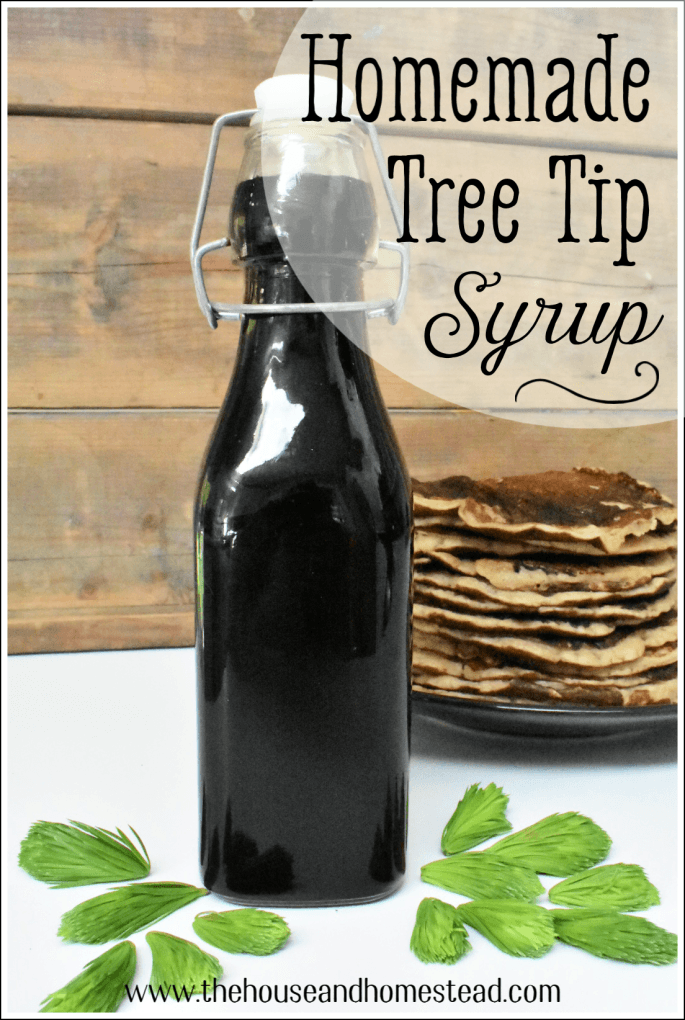 Homemade tree tip syrup