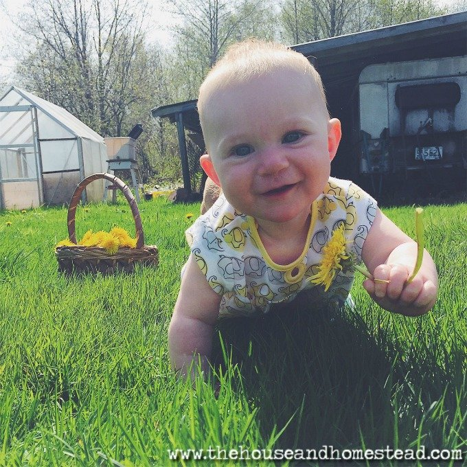 How to Homestead with Kids | Homesteading ain't easy. Homesteading with kids is harder. Here are 10 tips to help you get it all done.