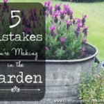 5 Mistakes You're Making in the Garden | Tips and tricks for gardening success