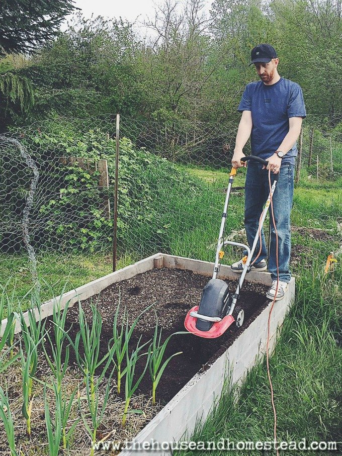 5 Mistakes You're Making in the Garden | Tips and tricks for better gardening