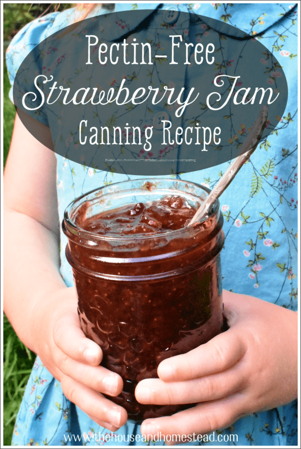 Learn how to can strawberry jam without any store-bought pectin! This pectin-free strawberry jam utilizes the natural pectin in strawberries to create a sweet and sticky homemade jam that tastes like summer in a jar. Plus, the optional addition of vanilla makes this classic strawberry jam taste just like a strawberry sundae! #strawberryjam #strawberryjamrecipe #howtocanstrawberryjam #strawberryvanillajam
