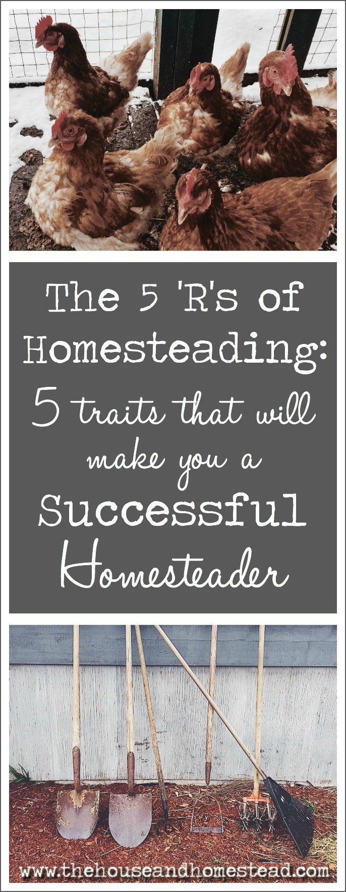 Homesteading skills are important, but attitude is everything. Learn the five traits that make a successful homesteader. How many do you already have up your sleeve?