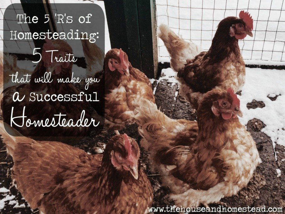 5 Traits of a Successful Homesteader