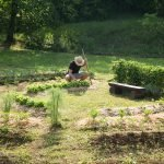 Learn the 12 design principles of permaculture and how to implement and apply these principles to benefit your garden, homestead and life. #permaculture #permcultureprinciples #principlesofpermaculture #permaculturedesign
