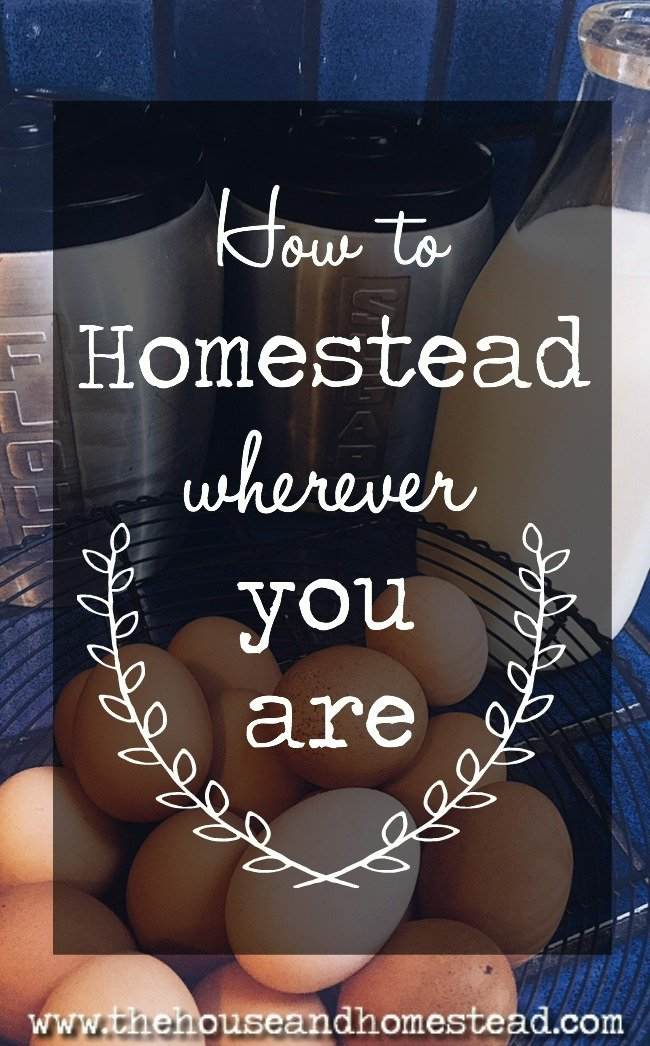 Whether your a novice or a seasoned homesteader living in an apartment in the city, a house in the suburbs or a farm in the country, it is possible to homestead wherever you are. Here's how.