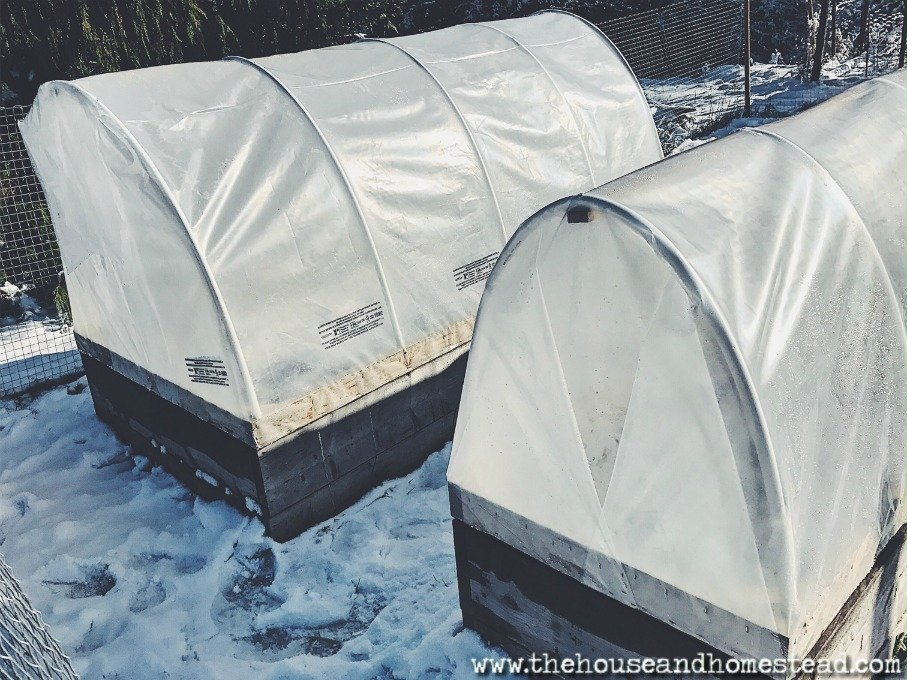 How to Build a DIY Row Cover to Extend Your Growing Season