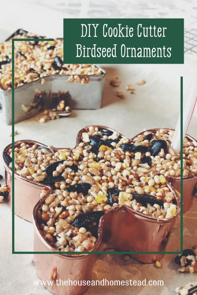 These quick and easy DIY birdseed ornaments make a perfect handmade Christmas gift for friends, family, neighbours, teachers or even just for the birds in your own backyard. And they can be made with simple, supermarket ingredients for just a few cents a piece! A fast and frugal gift idea for everyone on your list! #homemadeornaments #easyhomemadegifts #birdseedornaments