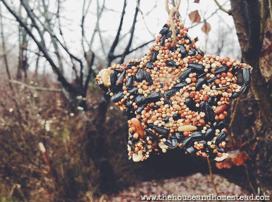 DIY Cookie Cutter Birdseed Ornaments