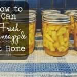 Canning pineapple at home helps you to control exactly what's in each jar, including how much sugar has been added. This pineapple recipe is made with light syrup, so there is less sugar than other standard recipes. Canning pineapple also ensures you have a supply of fresh pineapple preserved and ready to use in all sorts of recipes. #canpineapple #canningpineapple #preservepineapple #preservingpineapple #pineapplerecipes