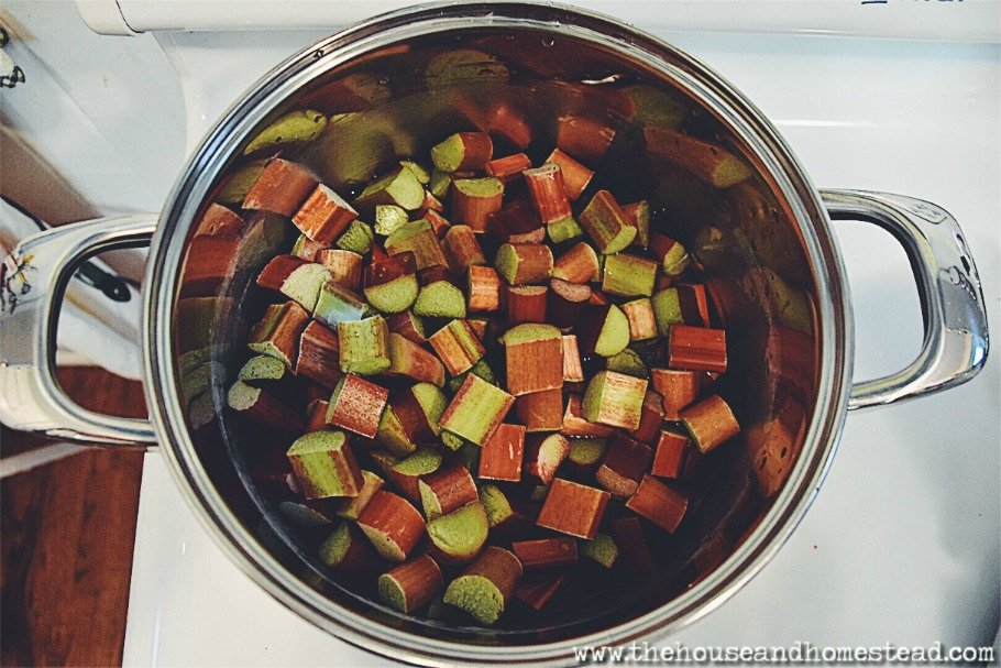This rhubarb juice concentrate is excellent used as a base for rhubarb soda, rhubarb-flavoured lemonade and iced tea, rhubarb cocktails, rhubarb popsicles and much more! Use fresh rhubarb to create this simple rhubarb syrup and preserve it to last all year long! #rhubarbconcentrate #rhubarbjuice #rhubarbsyrup #rhubarbnectar #homemadesoda