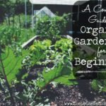 Whether you're a budding green thumb with a bit of experience under your belt or you've never grown a garden before in your life, there are a few gardening basics that are helpful to know when you're just getting started. Here is everything you need to know about organic gardening for beginners in one handy guide.