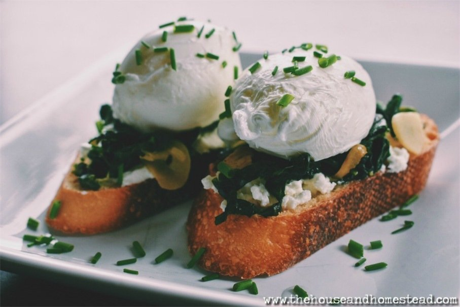 These poached eggs with kale are rich and hearty while still being healthy and farm-fresh. A quick but impressive homemade brunch and a perfect comfort food for any day of the week.