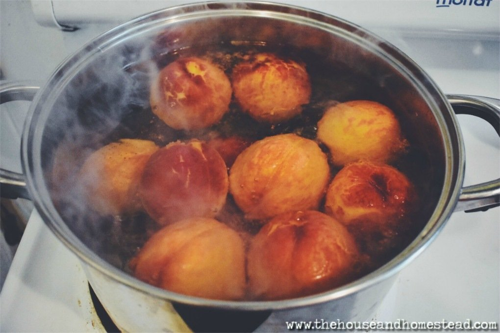 Honey is used in place of sugar and adds a distinct flavour to these lightly sweetened, home-canned peaches with honey. A perfect way to preserve the taste of summer all year long!