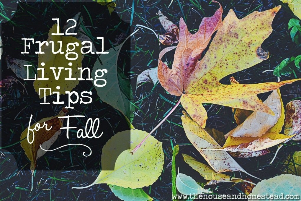 12 Frugal Living Tips For Fall