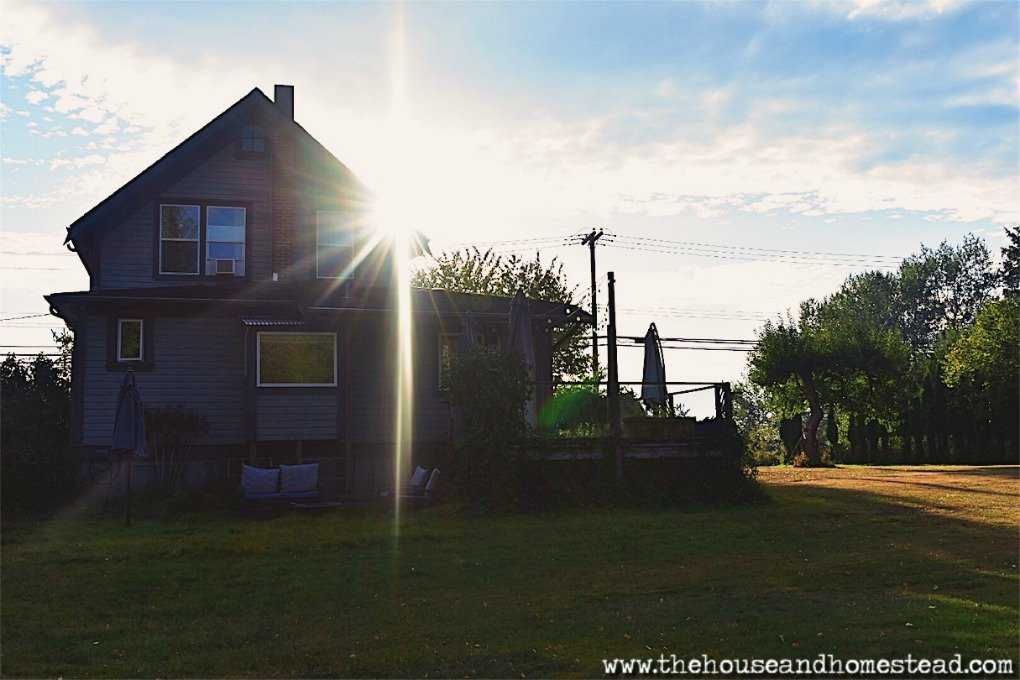 This is the house we began homesteading in. This is where we learned many valuable skills and hard life lessons. This, is the OG. Come along for a home & garden tour! #hometour #homeandgardentour #farmhousetour #homesteading