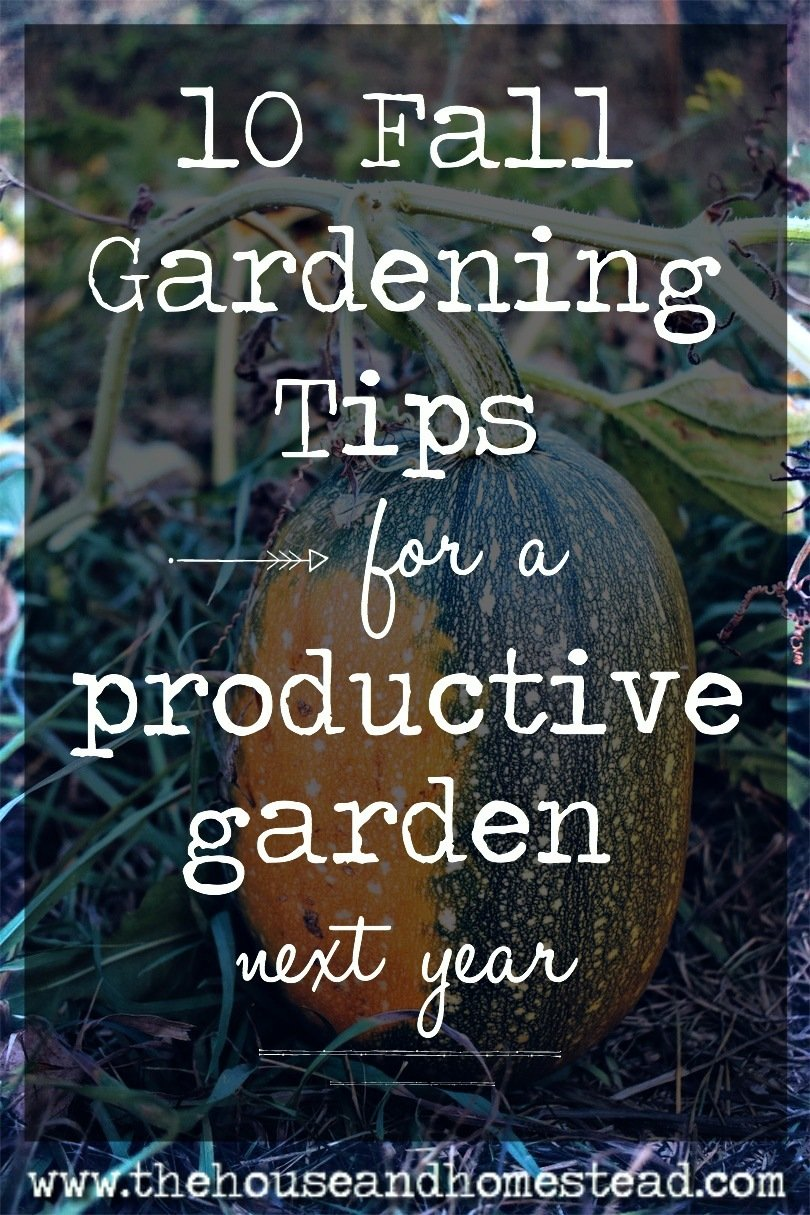 The best way to ensure a productive garden next spring and summer is to start this fall! Here are 10 fall gardening tips that will help you have a productive, healthy garden next gardening season. #fallgardening #fallgardentips #organicgardening #howtofertilizegarden