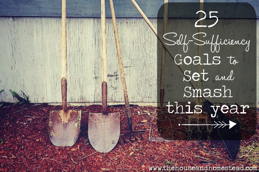 25 Self-Sufficiency Goals to Set and Smash This Year