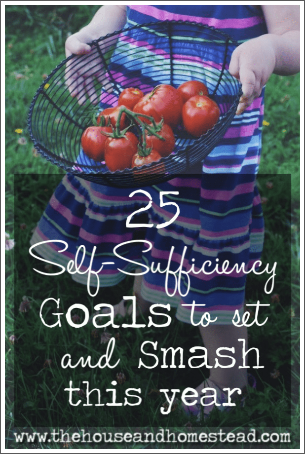 If you've made a resolution to become more self-sufficient this year, then this post is for you. Here are 25 ideas for self-sufficiency goals to set and smash this year, no matter what month you're starting in! #selfsufficiencygoals #self-sufficiencygoals #selfsufficiency #selfsufficient #howtostarthomesteading