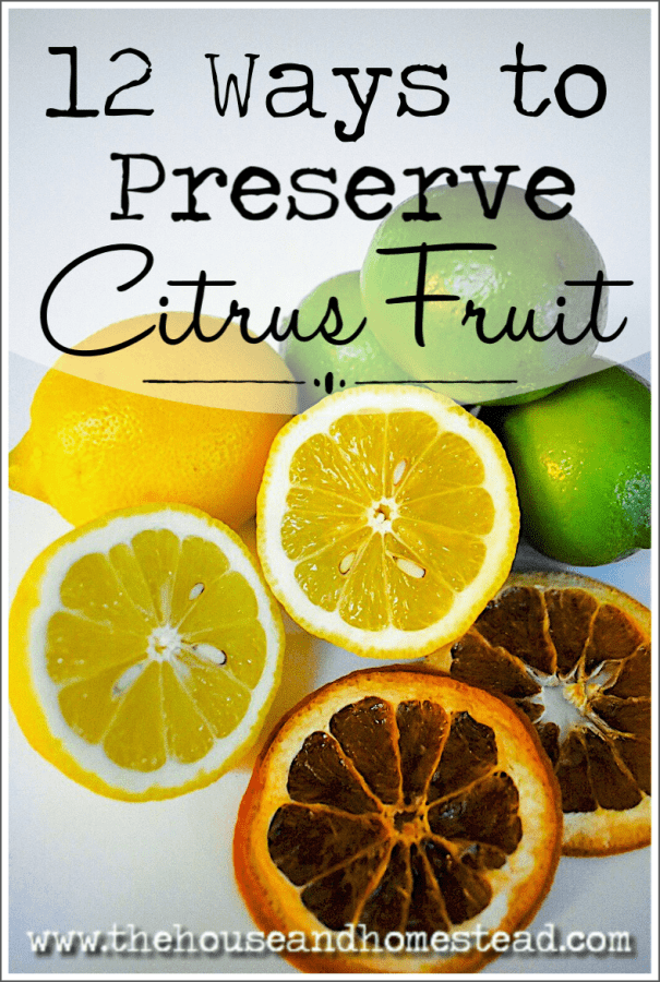 Learn how to preserve citrus fruits like oranges, lemons and limes and have them on hand whenever you need them. #preservecitrus #preservelemons #preserveoranges #citrusrecipes