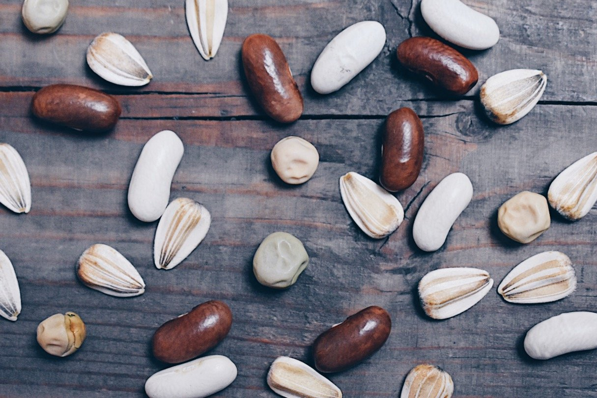 Plan your garden with seed saving in mind. Learn which seeds to choose, which plants to save seed from and how seed saving can benefit you and your garden! #seedstarting #seedsaving #gardenplanning #heirloomseeds