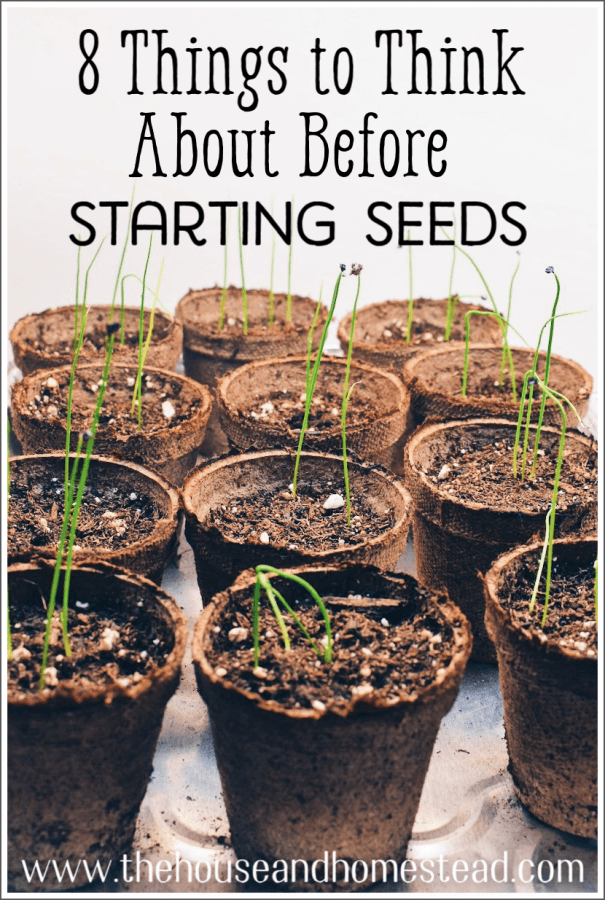 Get the most out of your vegetable garden this year by taking a few moments to consider these eight things before you even begin seed starting. #seedstarting #startseeds #homegarden #growyourownfood