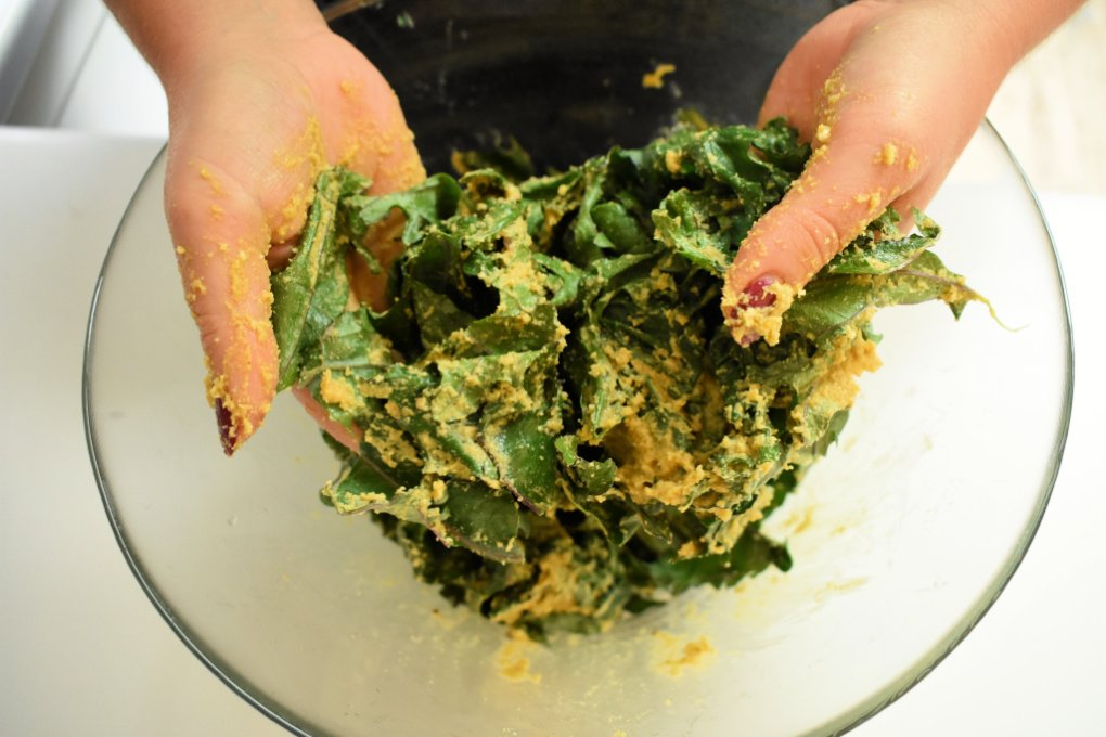 Learn how to make your own cheesy kale chips at home with this simple tutorial that includes instructions for using either a dehydrator or an oven. Preserve kale from your garden to eat all year long with this recipe for homemade cheesy kale chips made with nutritional yeast and cashews. Vegan-friendly too! #cheesykalechipsnutritionalyeast #kalechipsrecipe #homemadekalechips
