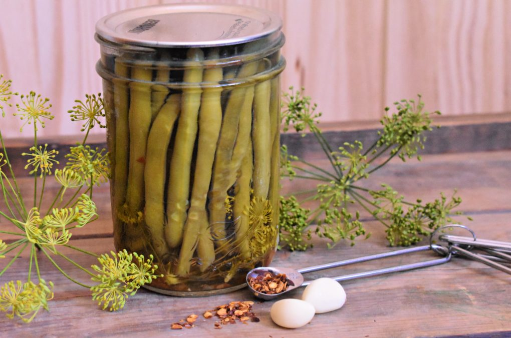 Spicy Garlic & Dill Pickled Beans Recipe