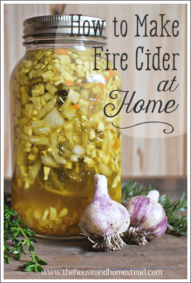 This traditional fire cider recipe is an easy (and cheap) herbal remedy to make at home and a potent natural medicine during cold and flu season. #firecider #fireciderrecipe