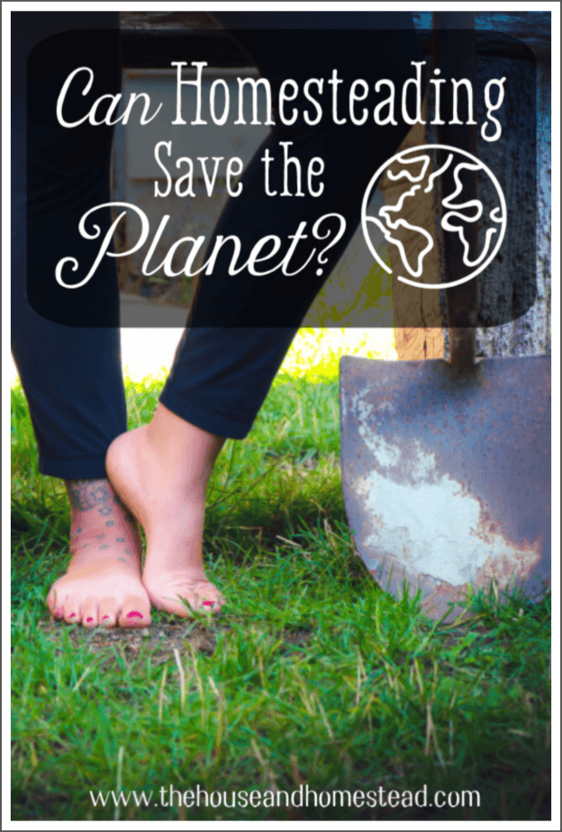 Can homesteading save the planet? Learn how living a more self-sufficient, sustainable lifestyle can help create a better, healthier world. #homesteading #sustainableliving #savetheplanet #sustainability