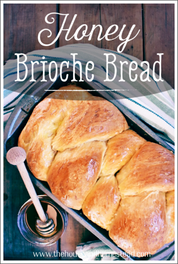 Part bread, part flaky pastry, this classic brioche bread recipe calls for a dash of vanilla, a drizzle of honey and generous amounts of eggs and butter! #brioche #briochebreadrecipe #honeybrioche #honeybread #homemadebread