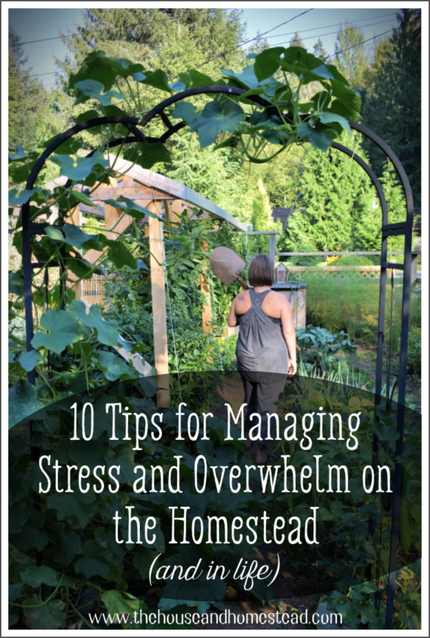 Need help managing stress and overwhelm on the homestead? Here are 10 tips to help you find peace and balance in stressful times.