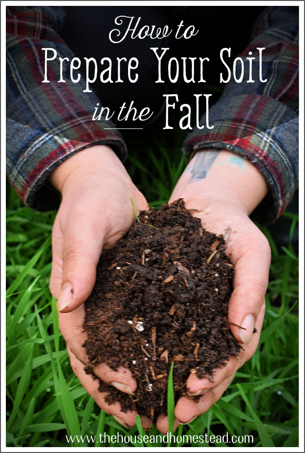Learn how to prepare your soil in the fall for planting in spring and give yourself a leg up on next year's growing season! #fallgarden #fallgardening #healthysoil