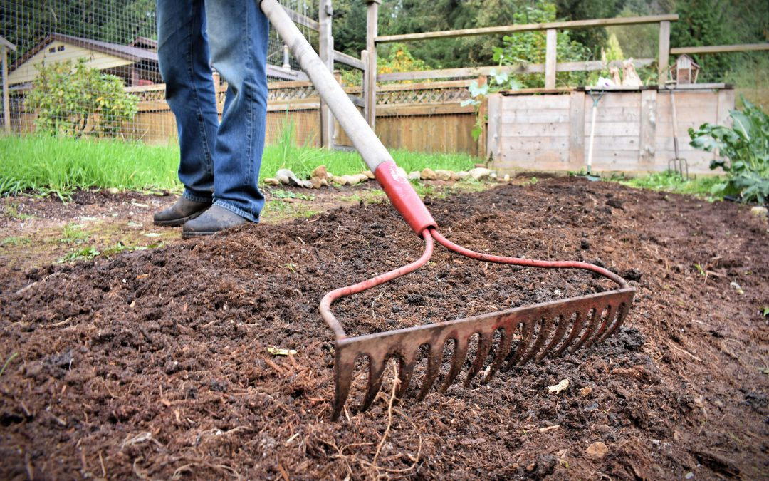 How to Prepare Your Soil in the Fall