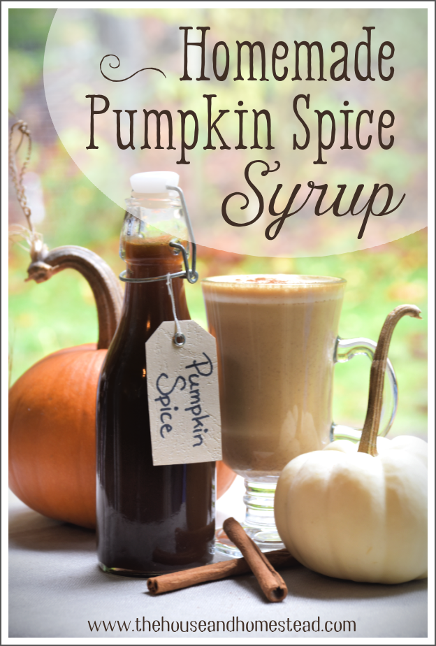 Learn how to make your own homemade pumpkin spice syrup with all natural ingredients for just pennies per batch! #pumpkinspicerecipe #pumpkinspicesyrup #pumpkinspicesyruprecipe #pumpkinspicelatte