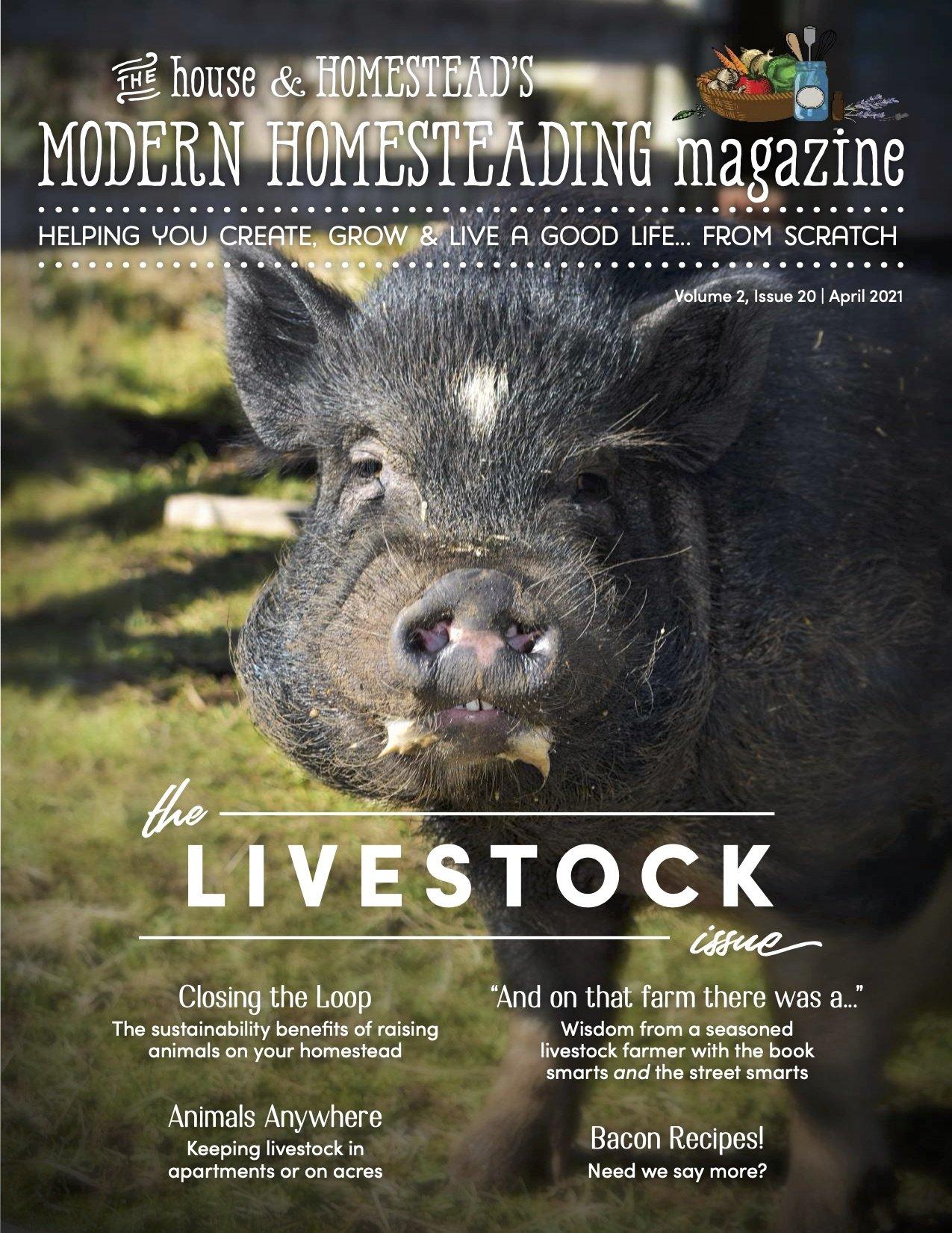 Modern Homesteading Magazine | The Livestock Issue | April 2021